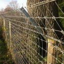 otter-fencing-5
