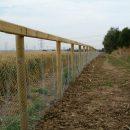 rabbit-fencing-2