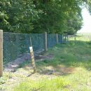 rabbit-fencing-4