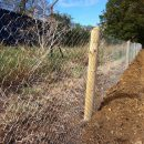 Rabbit-fencing-8