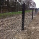 stock-fencing-3