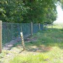 woodland-rabbit-fence
