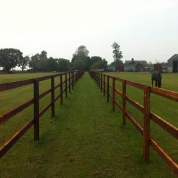 post-and-3-rail-fencing
