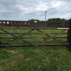 stallion-gate