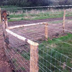 stock-fencing-2